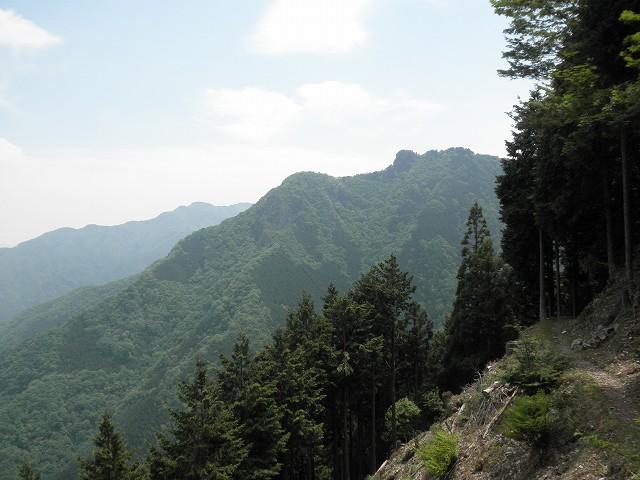 遥拝殿からの風景